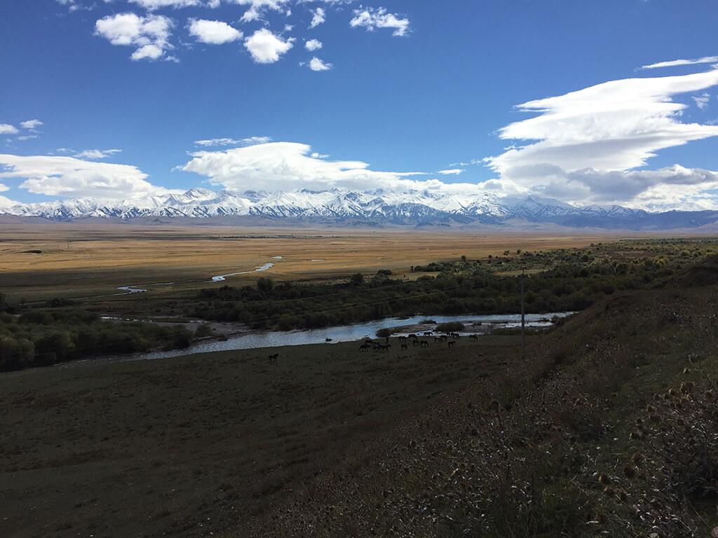 Pohľad na kone pasúce sa pri rieke za ktorými sa nachádza široká pláň zakončená majestátnymi zasneženými horami a modrou oblohou
