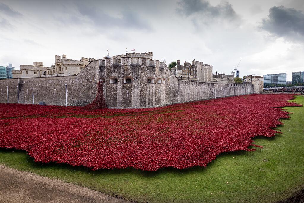 More červených kreramických vlčích makov lejúcich sa z historickej Tower of London do priekopy okolo stavby